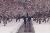 Students Walking Through a Snow Covered Kaufman Mall