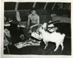 Goat in the Navy Barracks