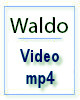 DVD Recording:  2008 Waldo Family Lecture Series on International Relations